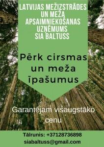 Pērk mežus un cirsmas visā Latvijā