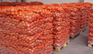 Продается лук высокого качества из России